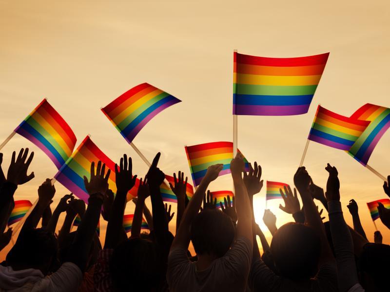 婚姻平權公投 力拚將同婚寫入民法