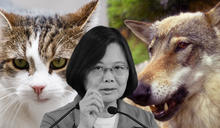 日媒評中台關係 猶如戰狼遇上貓戰士