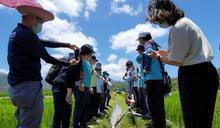 水利署發表「水稻智慧間歇灌溉」 節水還能還水於河