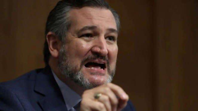 VIVA Militer: Senator Partai Republik AS, Ted Cruz