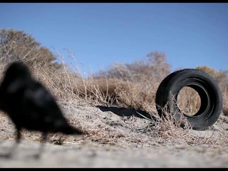 《超能輪胎殺人事件》的ㄎㄧㄤ 導認證
