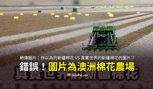 【易誤解】你以為的新疆棉花VS真實世界新疆棉花的圖片?引用澳洲棉花農場照片