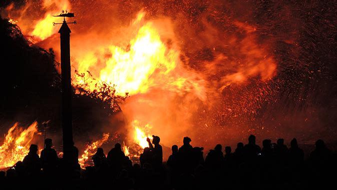 kebakaran hutan | pexels.com/@pixabay
