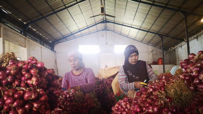 Sebanyak 165 ton bawang merah Probolinggo dilepas menuju negara Thailand. Kementerian Pertanian melalui Balai Karantina Pertanian Surabaya bersama PT. Cipta Makmur Sentausa melakukan ekspor perdana tahun 2019 bawang merah dari Probolinggo.