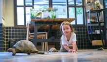 Janet攜2歲兒錄影 錄到一半...兒子突然趴在地上「爬來爬去」