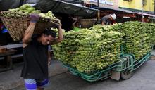 菲「國民沾料」香蕉醬 撫慰民心的美食發明