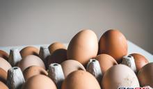 澳洲Gannawarra郡爆H7N6禽流感 本港暫停進口當地禽類產品