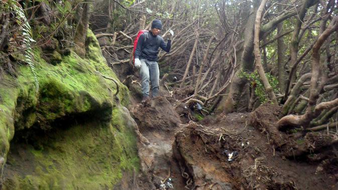 Aktivitas mendaki gunung harus diimbangi dengan kesiapan fisik dan mental. (Liputan6.com/ Novia Harlina)