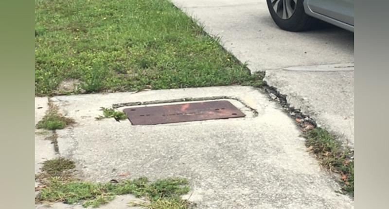 Charlie was electrocuted on a man hole cover (pictured)