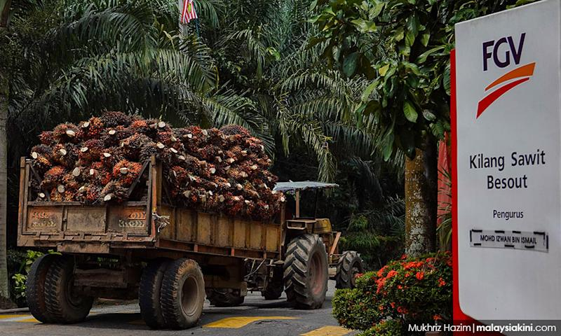 FGV denies US claims of using forced labour