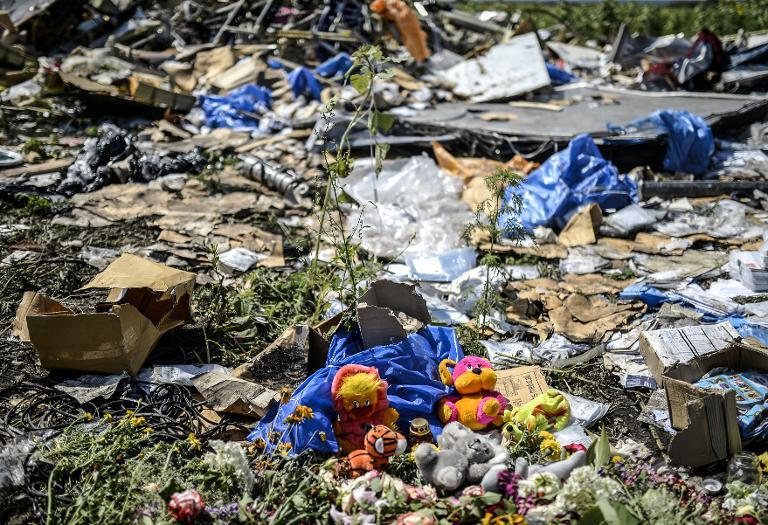 Toys are pictured among the wreckage at the crash site of Malaysia's flight MH17 in east Ukraine on July 20, 2014