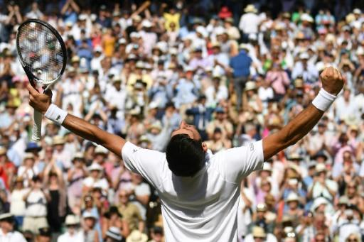 King of the court: Novak Djokovic celebrates after beating Kevin Anderson