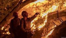 特朗普西岸視察火災 否認氣候變化