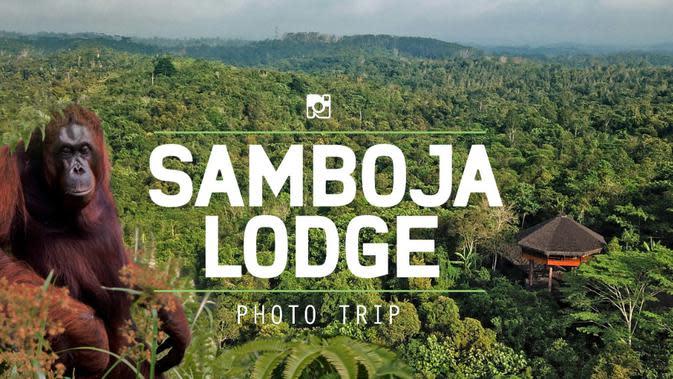 Menjajal Bermalam di Samboja Lodge, Penginapan Eksklusif di Tengah Hutan Kalimantan