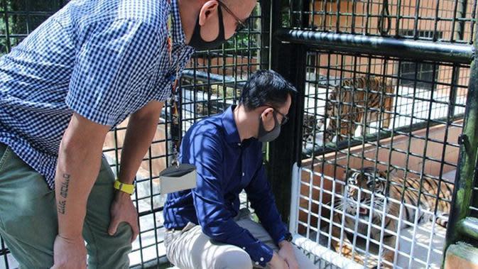 Koleksi Taman Safari Indonesia. (dok. Hero Group/Dinny Mutiah)