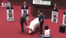 瘦肉精證實有毒!昔反馬進口美牛 專家:台灣有權說不