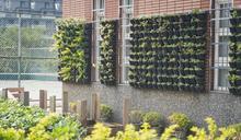 建築綠化有成 竹市打造85處城市森林