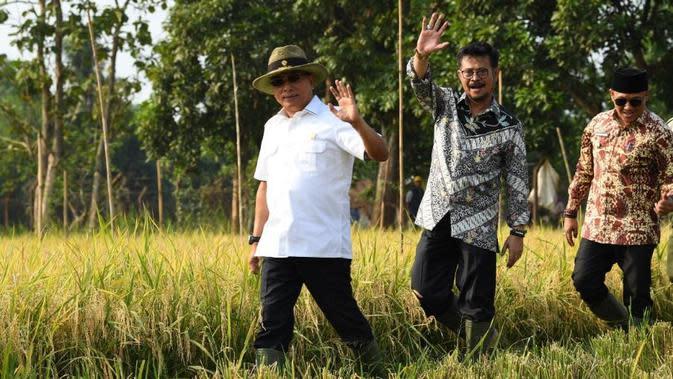 Kementan: Temanggung Contoh Baik Perlindungan Lahan Pertanian