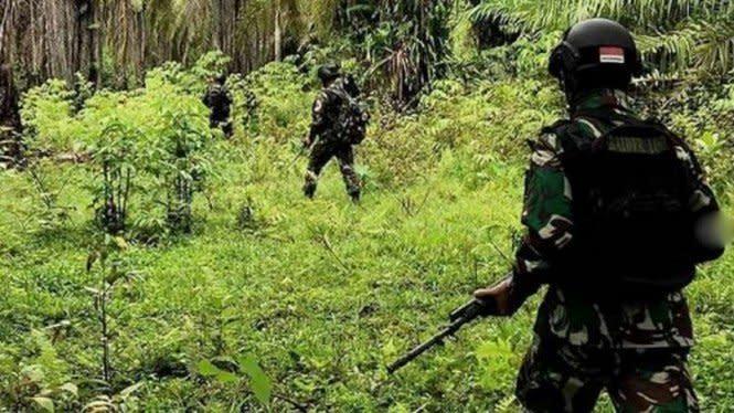 Suara Misterius Muncul di Rimba Papua Sebelum TNI Gempur Sarang OPM