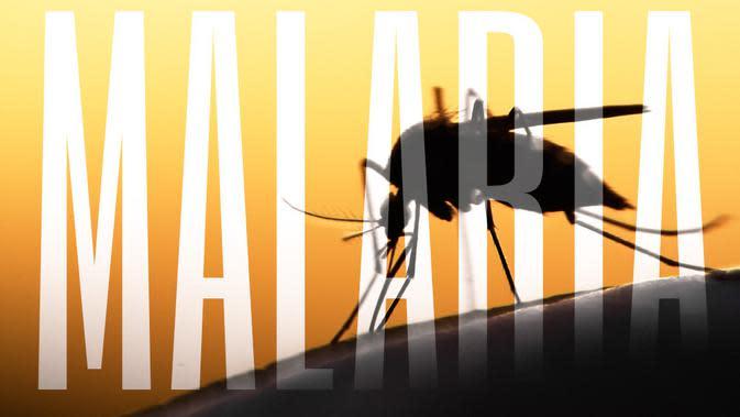 Malaria (Mycteria/Shutterstock)