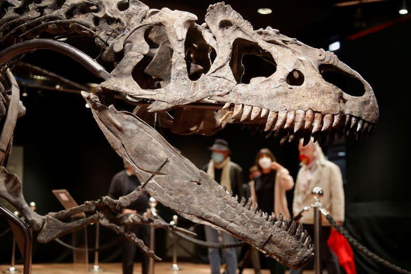 Remains of the day: dinosaur skeleton fetches 3 million euros