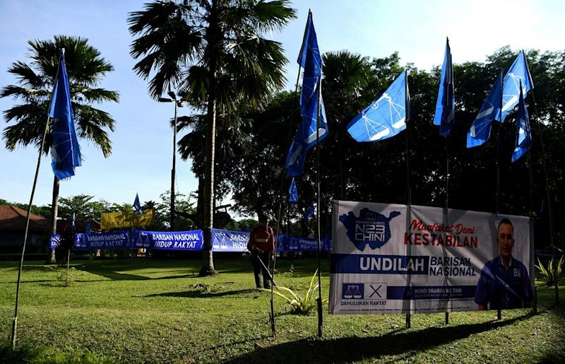 Barisan Nasional flags are seen along the road ahead of the Chini by-election in Pekan June 23, 2020. ― Bernama pic