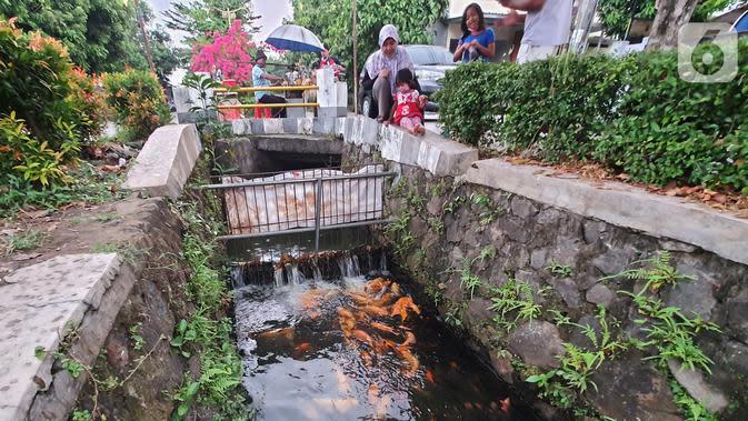 Warga bersama anak-anak melihat ikan yang dibudidaya di sepanjang saluran air di Puri Pamulang, Tangerang Selatan, Minggu (13/8/2020). Saluran air atau selokan dari aliran Situ Ciledug dimanfaatkan warga sejak PSBB diterapkan pemerintah. (Liputan6.com/Fery Pradolo)