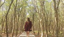 森林秘境玩瘋溪州!一日漫遊小鎮超有趣