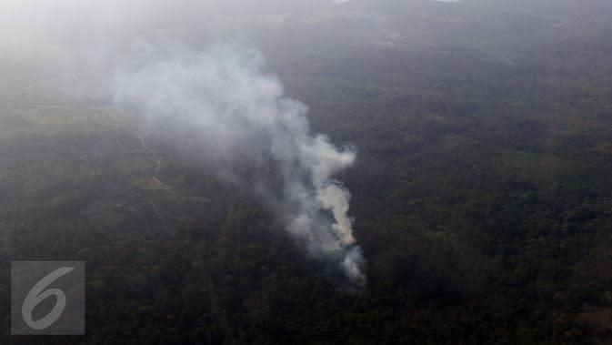 Ini Dia Komplotan Penyebab Kabut Asap Kalimantan
