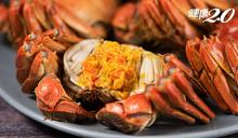 吃大閘蟹7大禁忌、4大部位別吃!中醫師建議搭配2食物可解寒、解毒