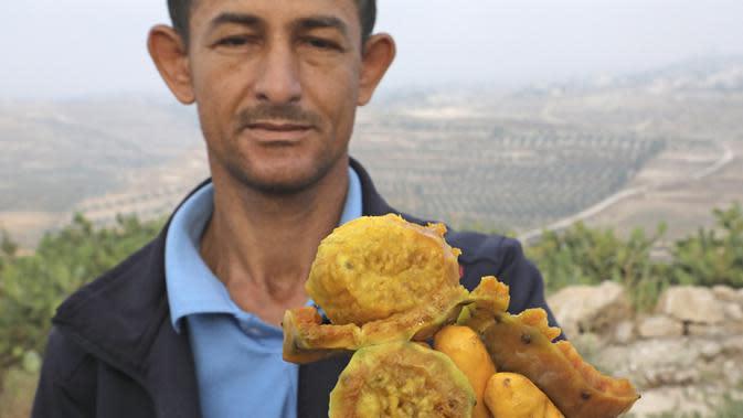 Seorang pria menunjukkan buah pir berduri di Desa al-Simiya, dekat Kota Hebron, Tepi Barat, Palestina, Selasa (4/8/2020). (HAZEM BADER/AFP)