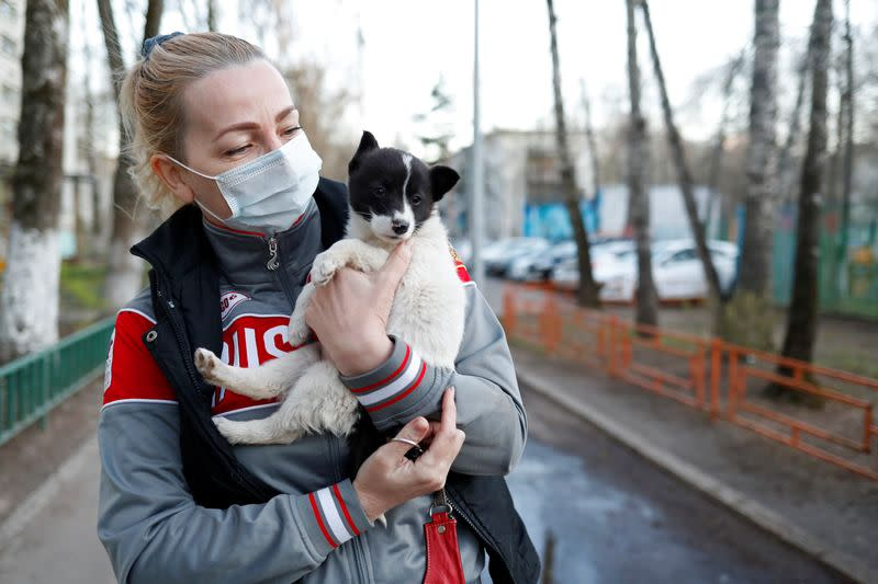 Discarded puppy Locky's luck turns in Moscow lockdown