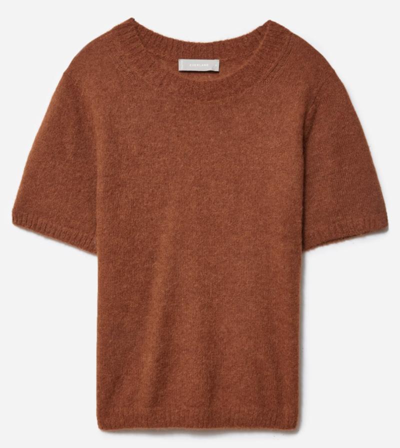 Everlane Alpaca Sweater Tee in Dark Copper