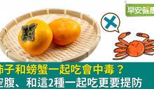 空腹吃、跟螃蟹吃都不宜!避開六種吃法安心享用美味秋柿
