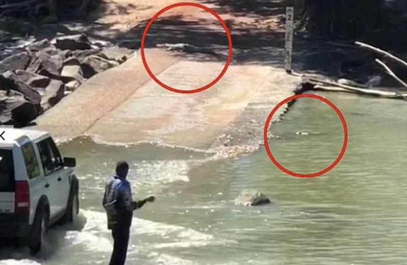 A man pictured fishing near two crocodiles at Cahills crossing in 2018.