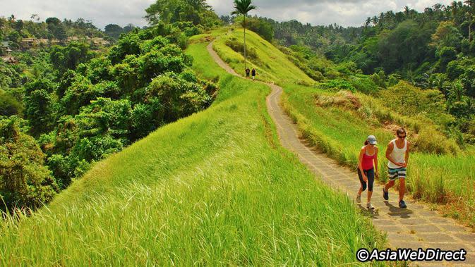 Campuhan Ridge Walk, Ubud, Bali. (AsiaWebDirect)