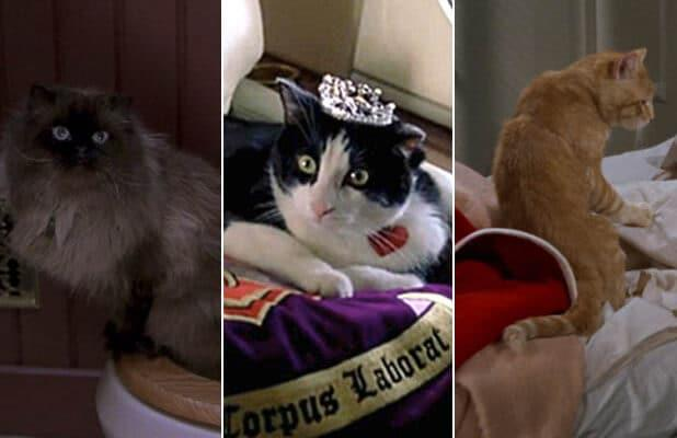 10 Scene-Stealing Cats in Movies, From 'Breakfast at Tiffany's' to 'Captain Marvel' (Photos)