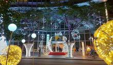 仁愛圓環城堡光廊亮起來 台新15米聖誕樹點燈