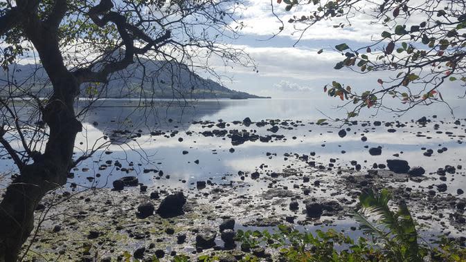 Minyak mencemari pantai di Riviere des Creoles, Mauritius, Minggu (9/8/2020). Mauritius memberlakukan status darurat setelah kapal Jepang, MV Wakashio, kandas dan menumpahkan 1.000 metrik ton minyak mentah. (Sophie Seneque via AP)
