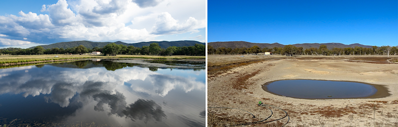 Contrasting photos taken in 2017 and 2019 show the impact of the drought in Stanthorpe. Source: Jenny Hillman