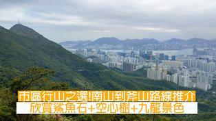 【市區行山】南山到斧山路線推介 欣賞鯊魚石+空心樹+九龍景色