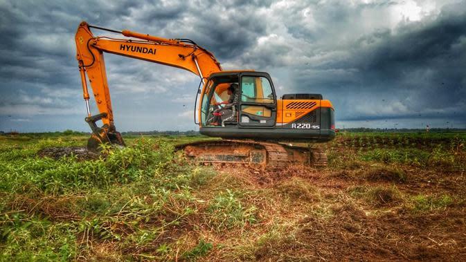 Mulai tahun 2019 Menteri Pertanian Andi Amran Sulaiman melaksanakan Program SERASI (Selamatkan Rawa Sejahterakan Petani) yang akan memanfaatkan 500 ribu lahan rawa pasang surut di Sumatera Selatan, Kalimantan Selatan, dan Sulawesi Selatan.
