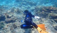 澎湖七美海洋巡守隊保育漁業資源有成(1) (圖)