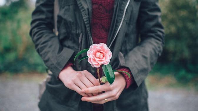 Ilustrasi Camellia. Sumber foto: unsplash.com/Ian Schneider.