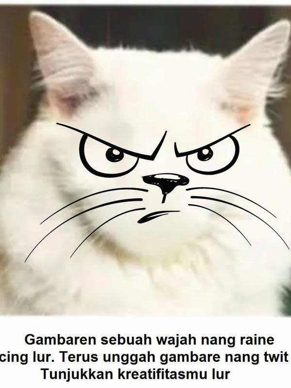 Gambar pada tubuh kucing (Sumber: Twitter/cengok12)
