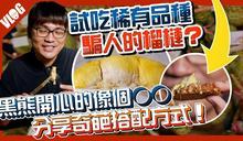 泰國稀有榴槤,超市幾乎買不到,不是金枕頭哦!(附法式優雅吃法)