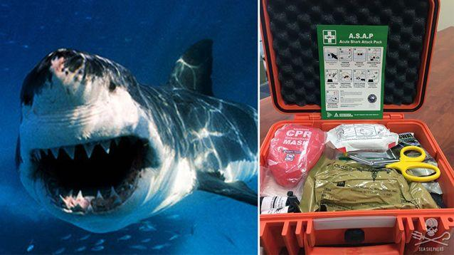 A great white shark attack might lead to the use of the Acute Shark Attack Pack (ASAP) at Wategos Beach. Source: Sea Shepherd
