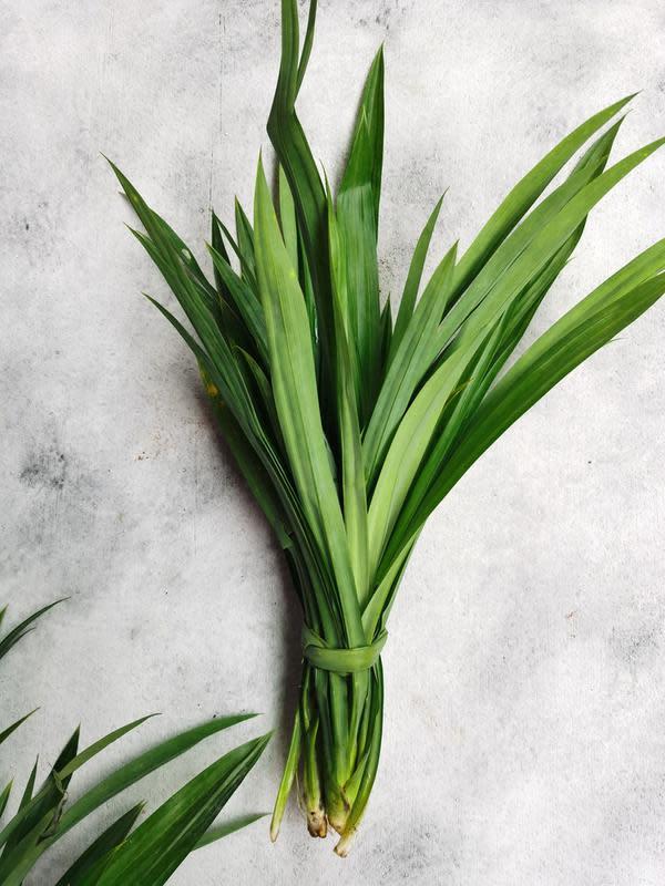 ilustrasi jenis dedaunan yang cocok digunakan untuk olahan masakan/Fendy halim/shutterstock