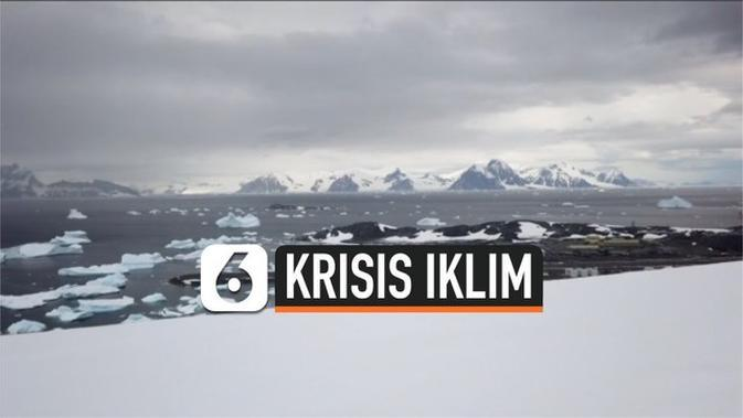 VIDEO: Krisis Iklim, 3 Triliun Ton Es Mencair di Antartika
