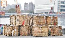 每月4萬噸廢紙圍城 環保災難全民埋單